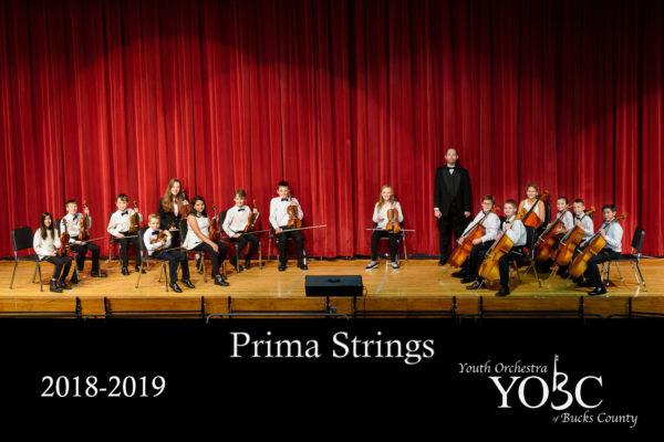 Prima Strings